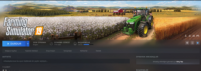 STEAM fs19