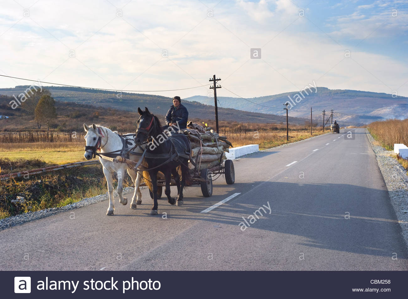 man-driving-horse-cart-by-the-country-road-horse-cart-on-romanian-CBM258